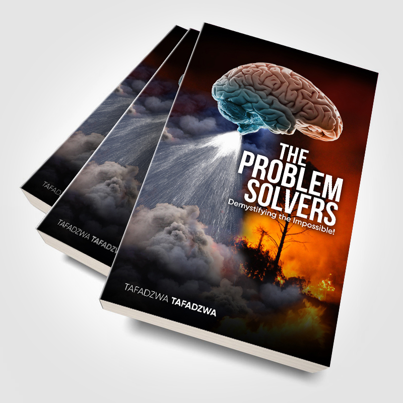 The Problem Solvers Book Cover